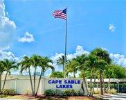 863 Cape Haze Ln, Naples image