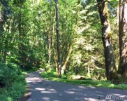 114 XX 207th Ave SE, Issaquah image