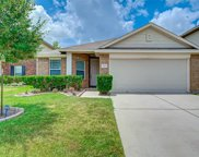 17415 Sterling Stone Drive, Houston image
