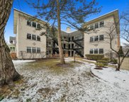 4258 N Greenview Street Unit #1F, Chicago image