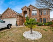 2621 Calico Rock Drive, Fort Worth image