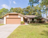 4601 Sun Valley Drive, Tampa image