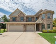 50 Waterford Pl, Trussville image