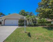 3388 Brian Road S, Palm Harbor image