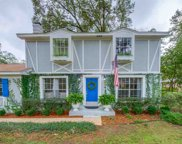 3237 Dungarvin, Tallahassee image