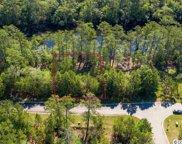 317 Cypress Flat Ct., Conway image