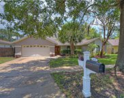 3230 Cullendale Drive, Tampa image