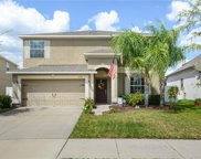 12316 Streambed Drive, Riverview image