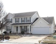 1027 Turtle Creek, O'Fallon image
