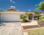 3458 Silver Meadow Way, Plant City image