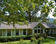 164 Tiny Kingdom Rd, Remlap image