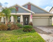 11937 Greenchop Place, Riverview image