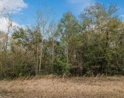 5+/- Acres Mill Creek Ln, Lucedale image