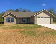 126 Crosslake Lane, Dandridge image