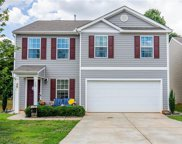 129 Mossy Pond Road, Statesville image