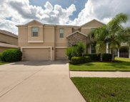 12216 Streambed Drive, Riverview image