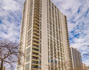 1455 N Sandburg Terrace Unit #2602, Chicago image