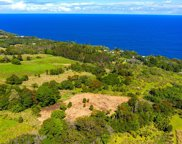 32-899 OLD MAMALAHOA HWY, Big Island image