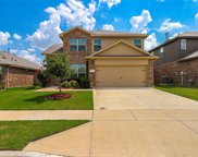 4217 Gallowgate Drive, Fort Worth image