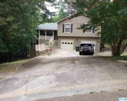 12002 Chimney Hollow Trail, Huntsville image