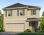 9119 Water Chestnut Drive, Tampa image