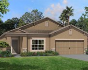 11449 Alachua Creek Lane Unit 1061, Riverview image