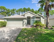 11847 Derbyshire Drive, Tampa image