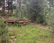 11698 Nichols Way, Conifer image