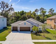 6221 Horse Mill Place, Palmetto image