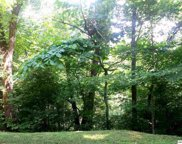 Lot Lot 9 Saddle Creek Way, Sevierville image