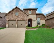 11616 Twining Branch Circle, Fort Worth image