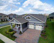 10157 Shallow Water Drive, Winter Garden image