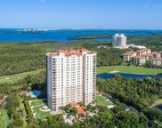23650 Via Veneto Unit 1703, Bonita Springs image