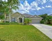 7018 Cardinalwood Lane, Land O' Lakes image