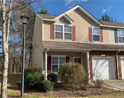 242 Tail Race  Lane, Fort Mill image