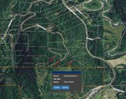 NNA  Whodathunkit 10 acres middle parcel, Sandpoint image
