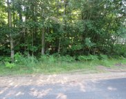 Lot 619 Chippendale, Houghton Lake image