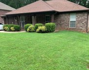792 Charley Patterson Road, New Market image
