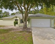 9397 Pineapple  Road, Fort Myers image