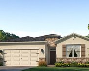 13309 Waterleaf Garden Circle, Riverview image