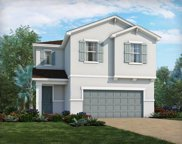 34024 White Fountain Court, Wesley Chapel image