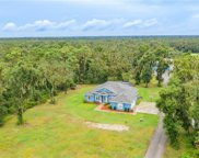 1651 Berry Farm Road, Lithia image