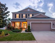 7217 Nightshade Drive, Riverview image