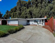 1259 Rieger Ave, Hayward image