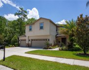 6612 Thornton Palms Drive, Tampa image