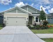 5547 Silver Sun Dr, Apollo Beach image