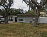 12424 Cottrell Street, Tampa image
