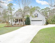 1099 Royal Tern Drive, Hampstead image