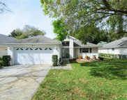 345 Juniper Way, Tavares image