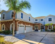 10226 Mallard Landings Way, Orlando image